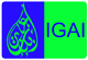 Ibn Ghazi Arabic Institute